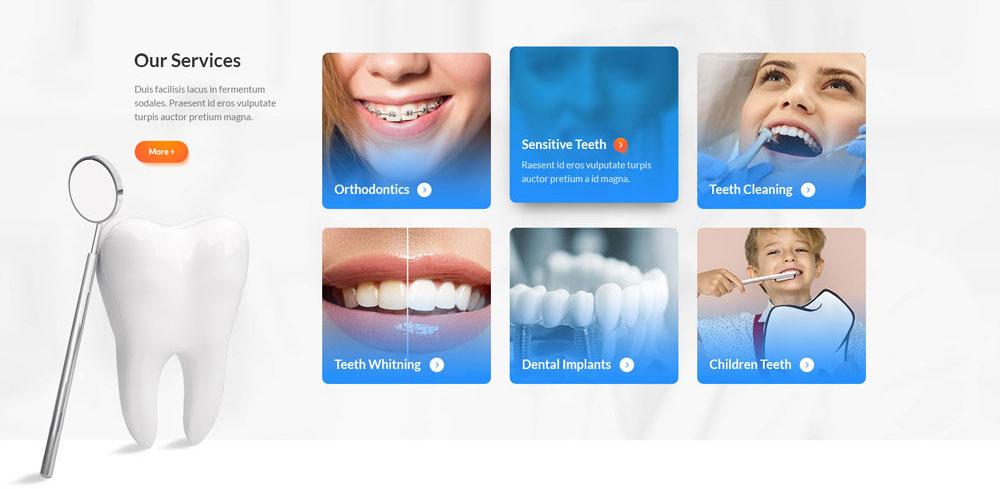 Chamwebdesign-health18